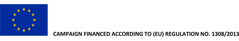 Logo OCM 2018